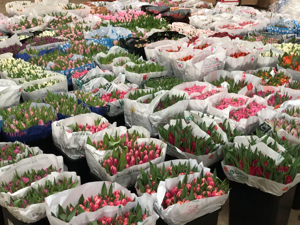 Китайские цветы дешево оптом